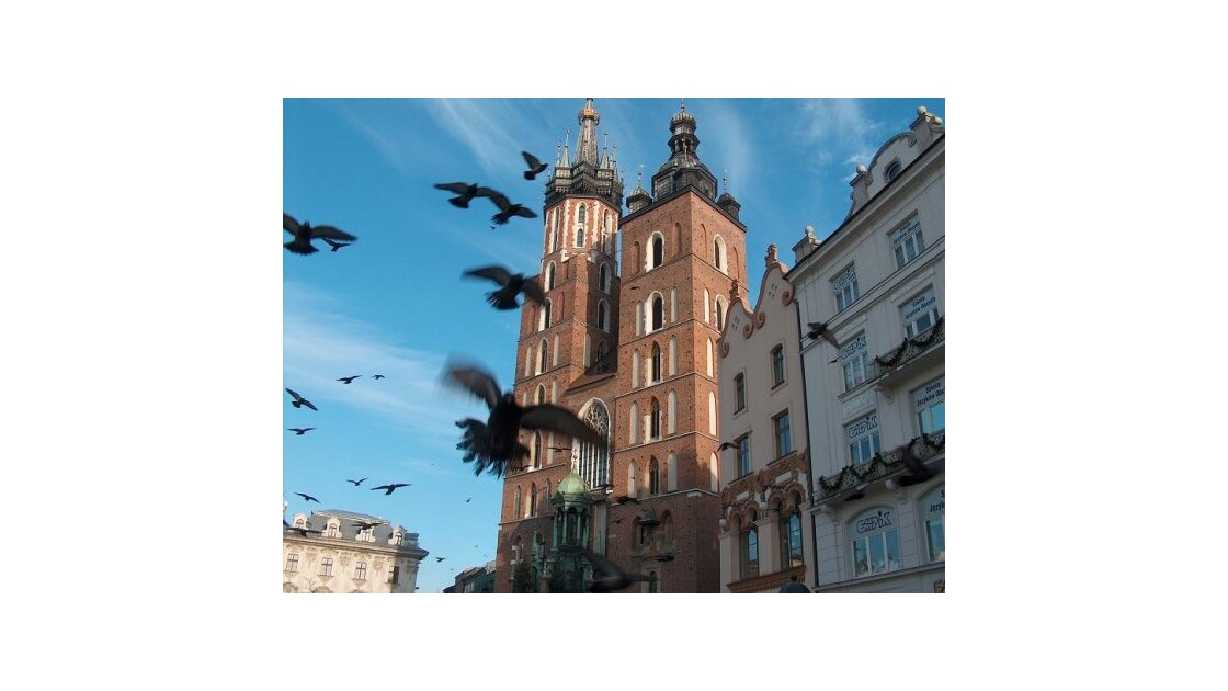Cracovie, envol