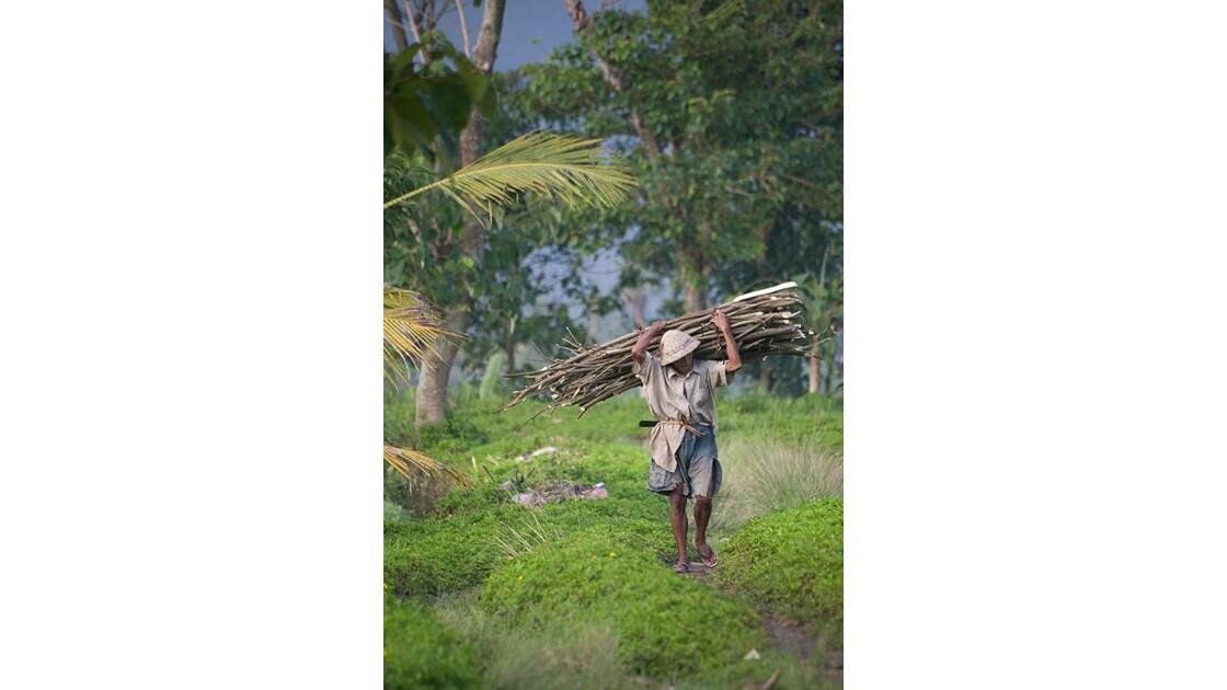 Bali, vieil homme fagot de bois
