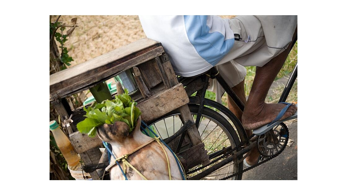 Bali, détail vélo, sur la route