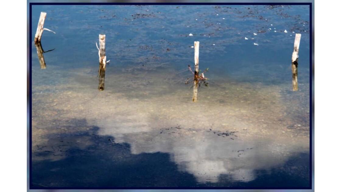 Piquets sur l'eau