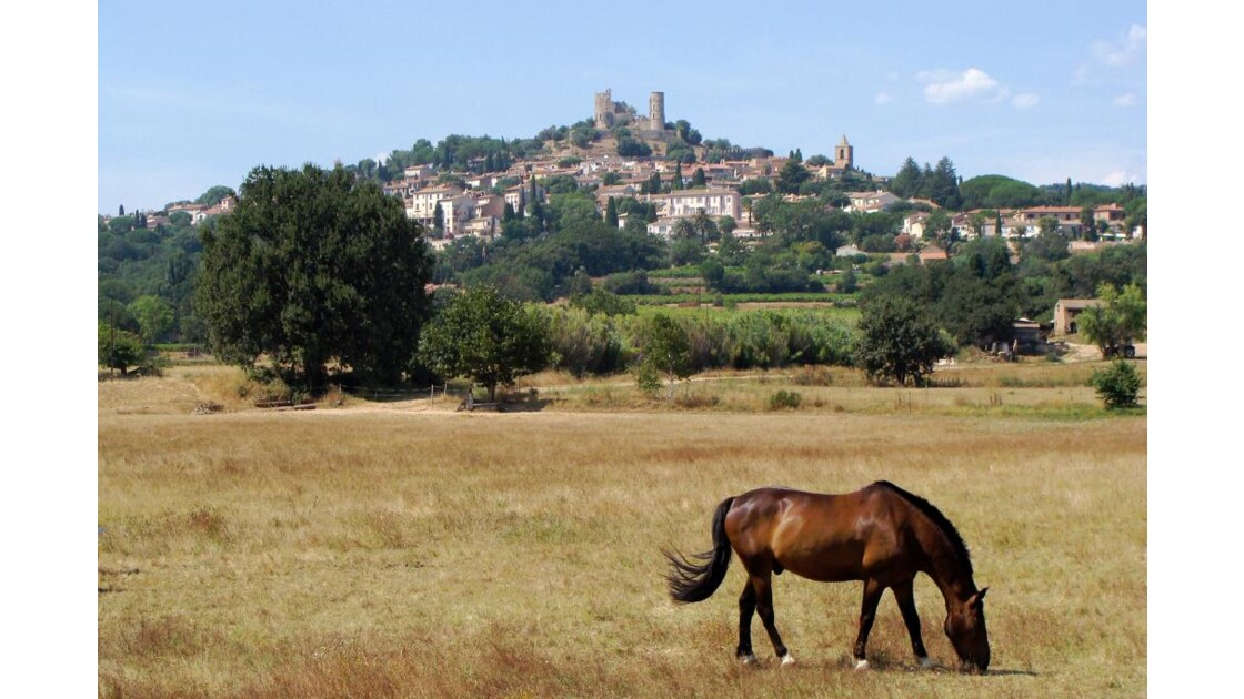 THE CASTLE and THE HORSE