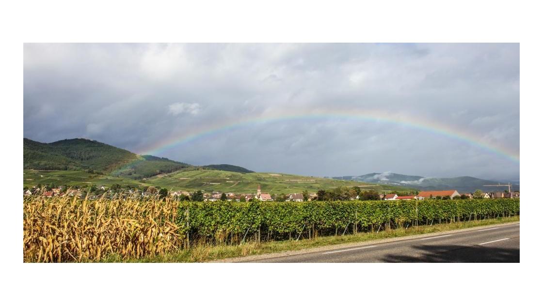 sur la route des vins....