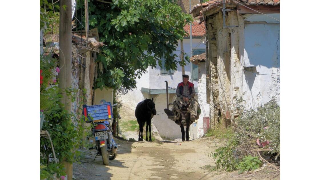 Sirince, paysan avec cheval et mulet