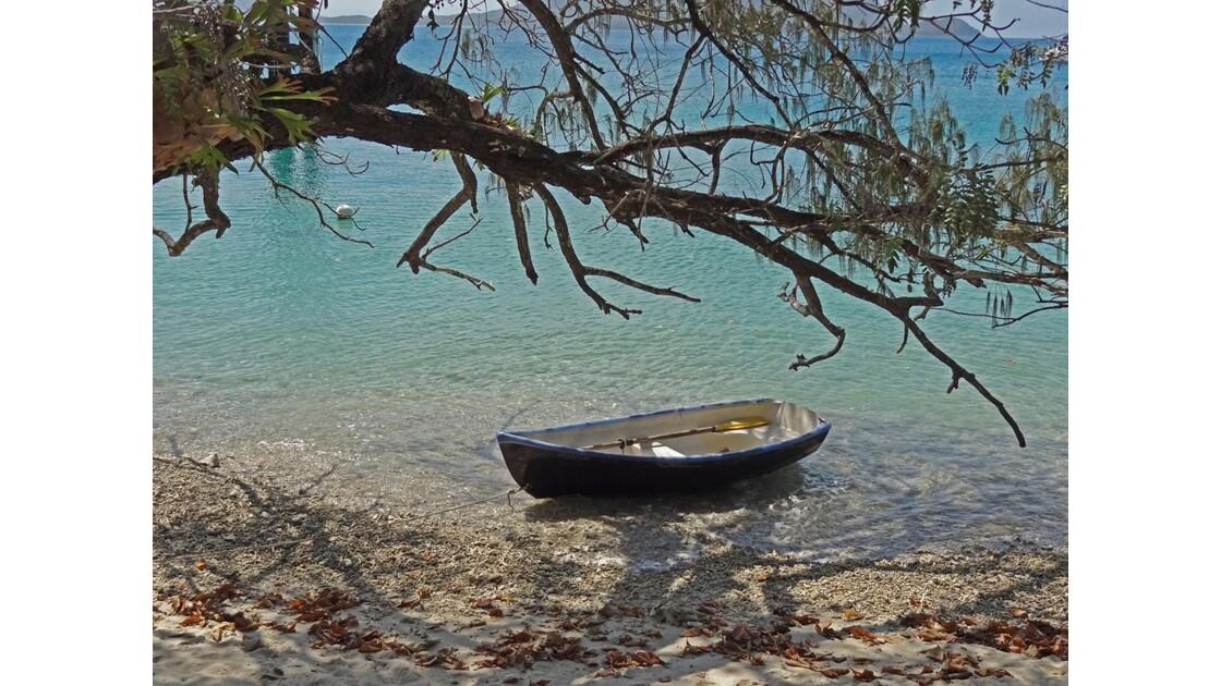 Australie Queensland île Fitzroy 1.jpg