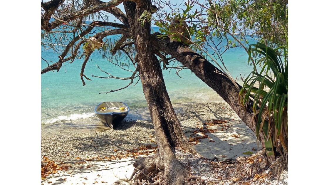 Australie Queensland île Fitzroy 2.jpg