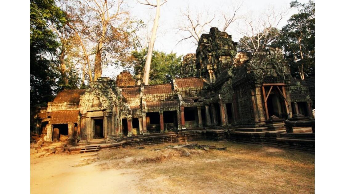 IMG_2465 Ta Prohm Angkor