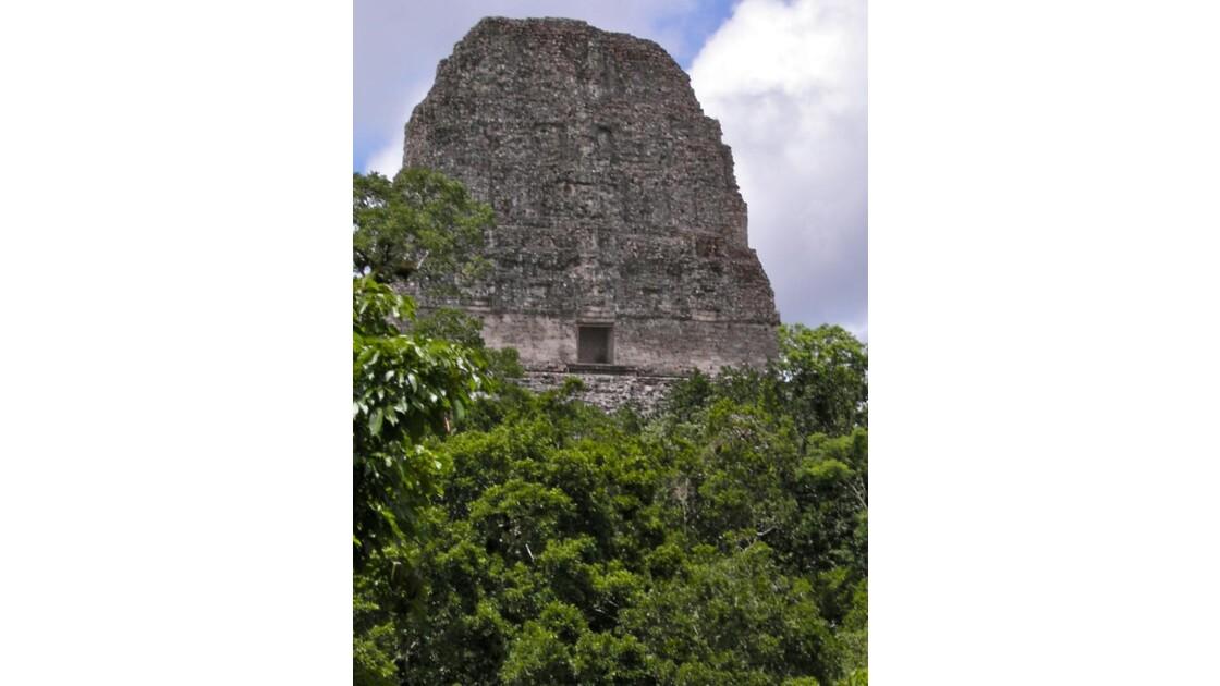 Tikal: Temple (acropole centrale)