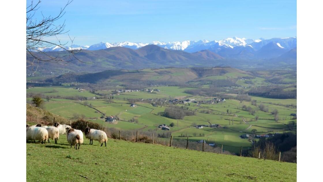 Pays Basque - 2013 02 03 (27)