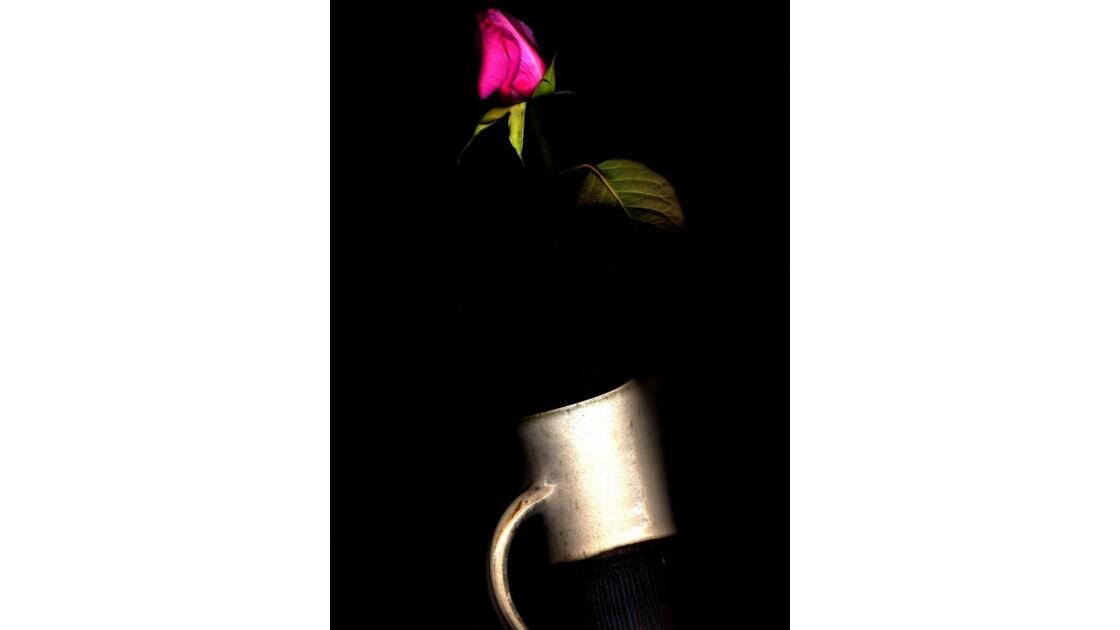 vase_avec_rose.jpg