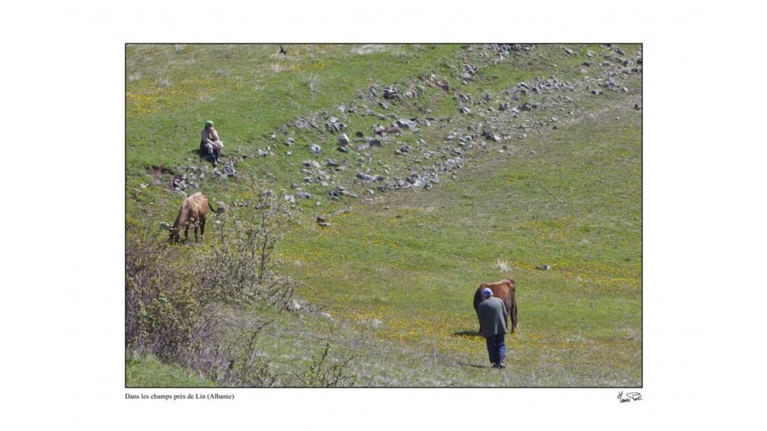 ruralité albanaise