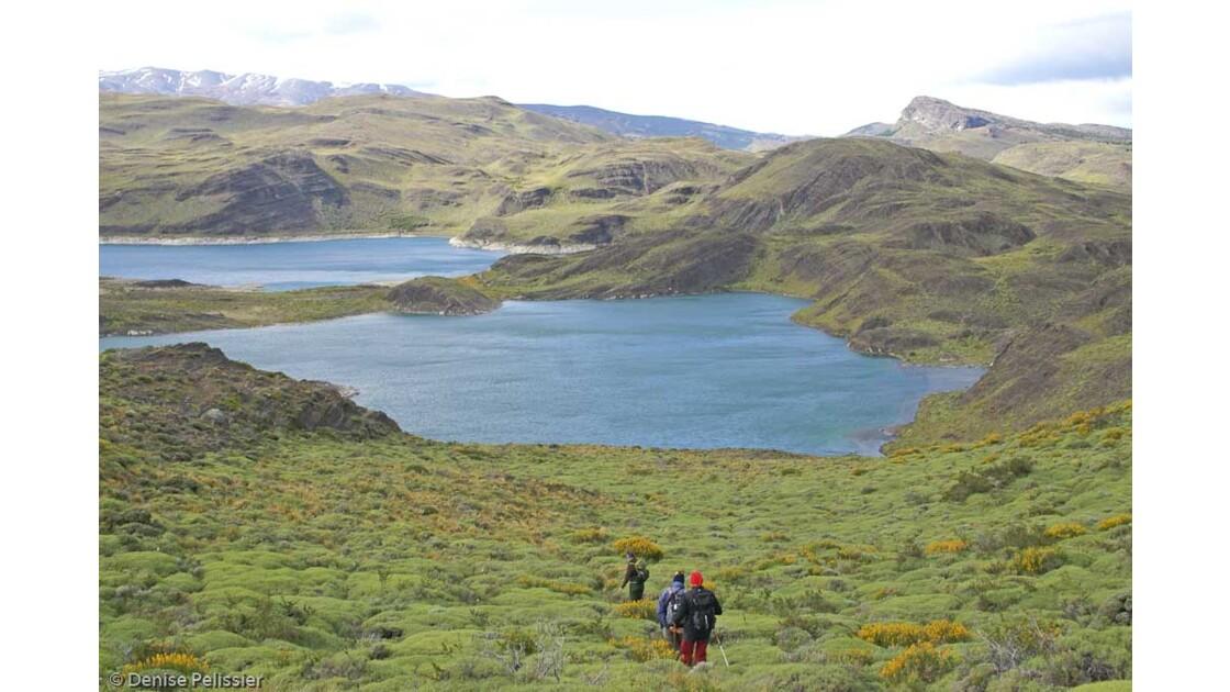 Torres del paine : lac Sarmiento