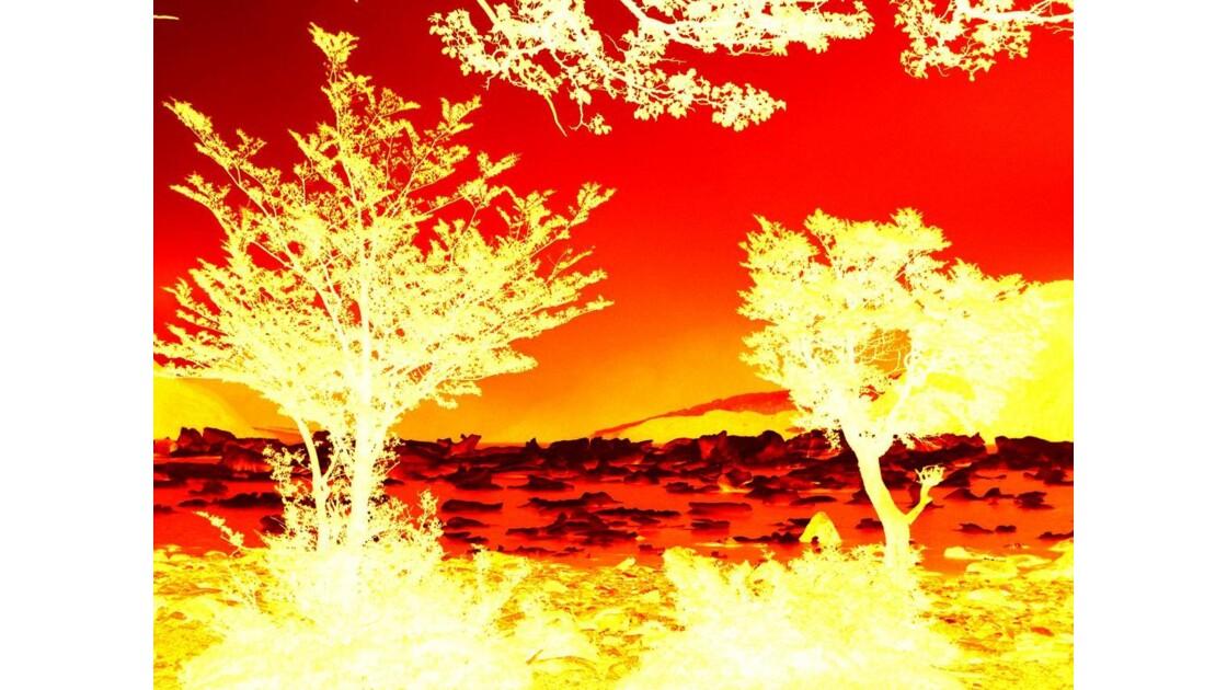 Dernière version d'un paysage en or