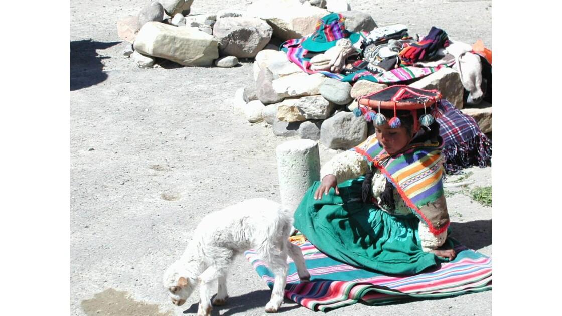 sur l'altiplano