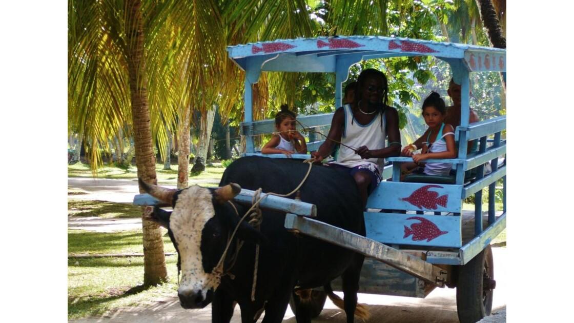 Moyen de transport (La Digue-Seychelles)