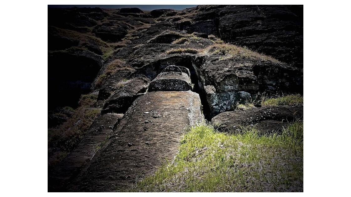 Le plus grand moai sculpté gisant