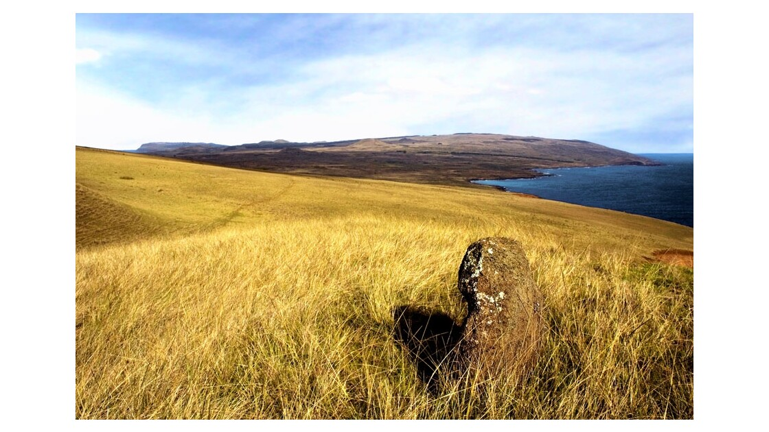 Moai solitaire presqu'île de poiké