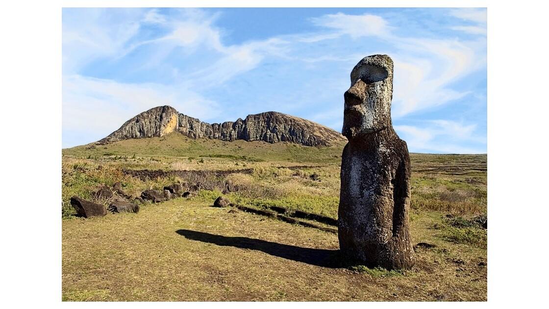 Moai sentinelle
