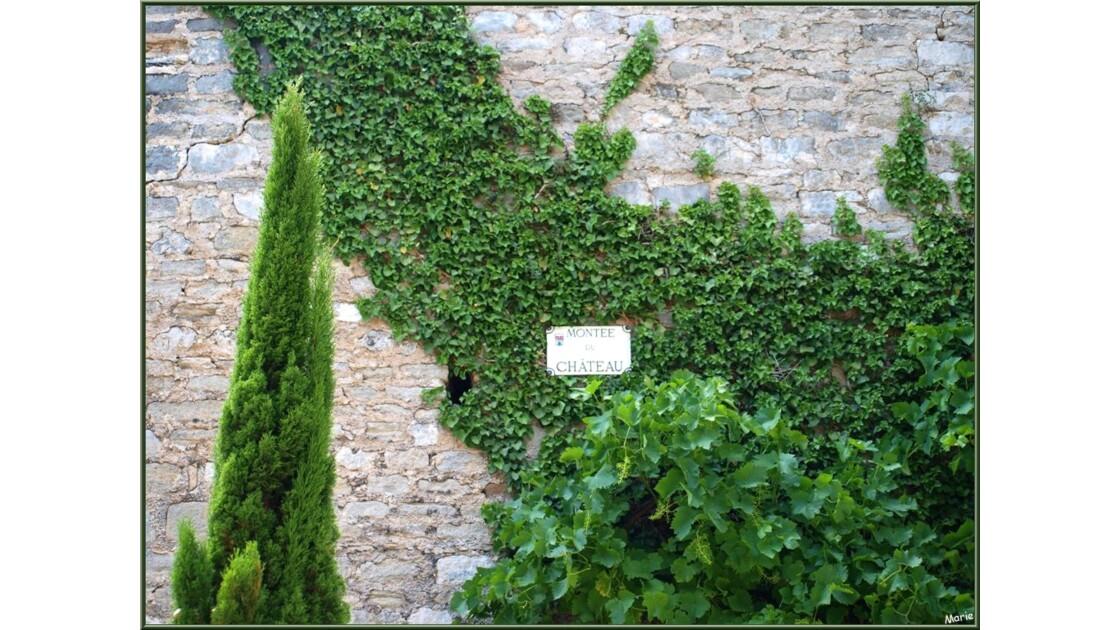Verdoyance à la Montée du Château_P6019
