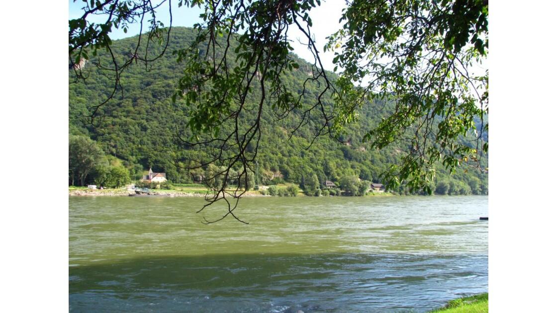 le beau Danube ... vert !