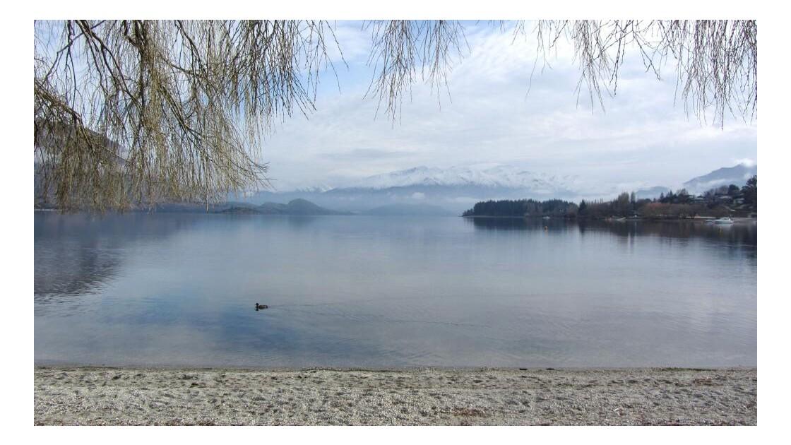 Sur les rives du lac Wanaka