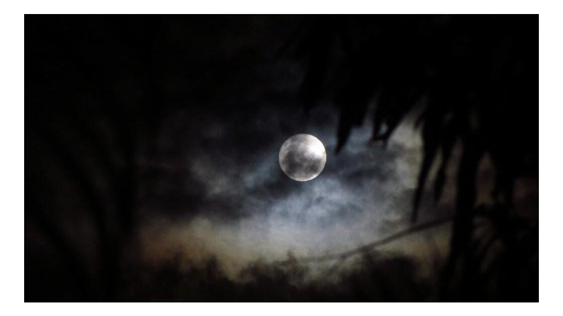Clair de lune polynésien