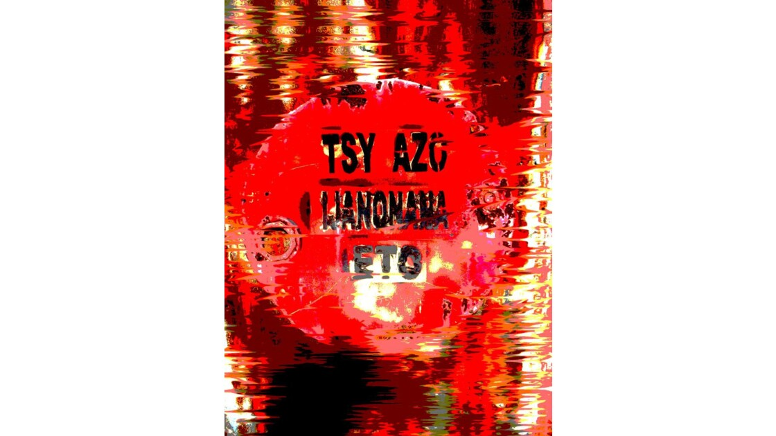 PANNEAU_1___MADAGASCAR.jpg