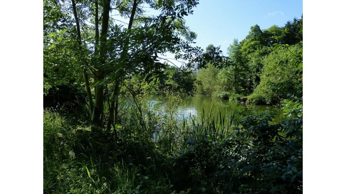 Lac des Ulis