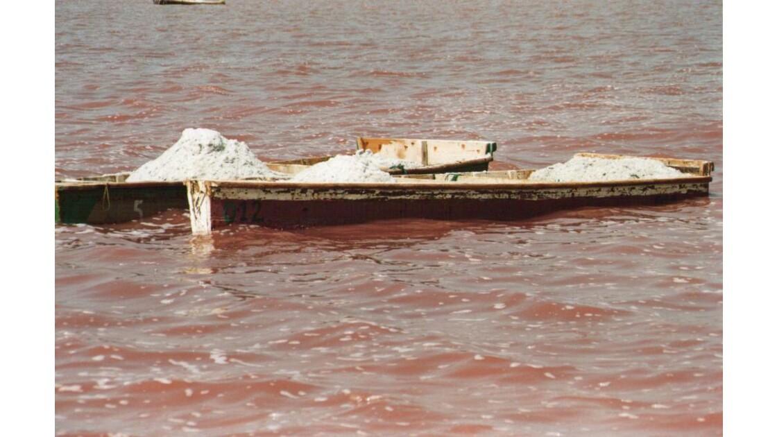 Le sel du lac Rose