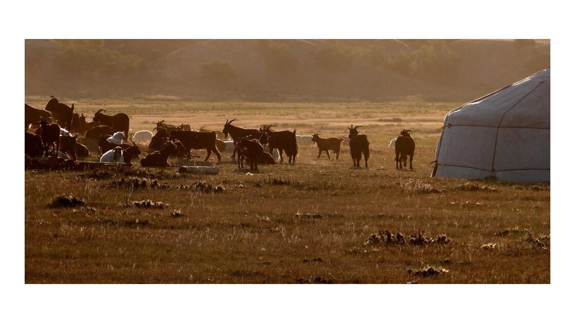 Scène pastorale au lever du jour