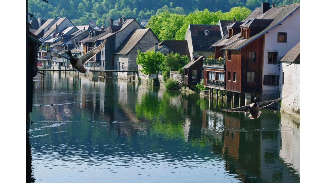 Maisons au bord de la Loue à Ornans