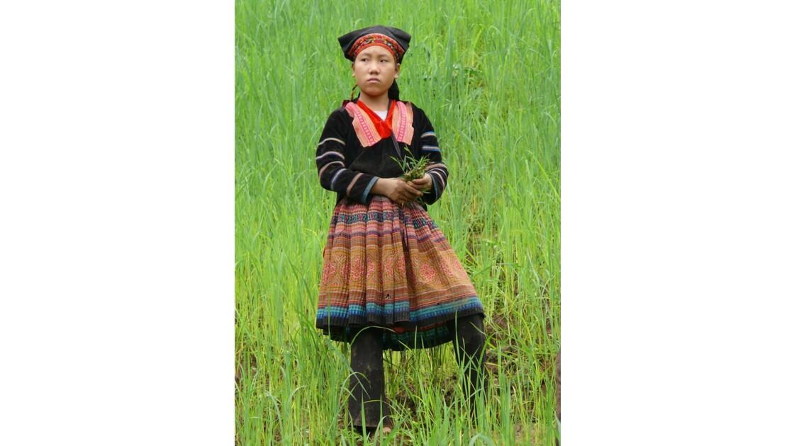 Jeune fille dans une rizière