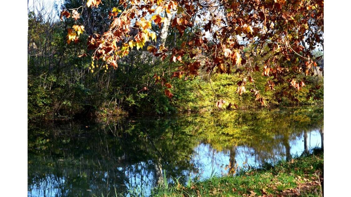 Le soleil joue sur le canal !