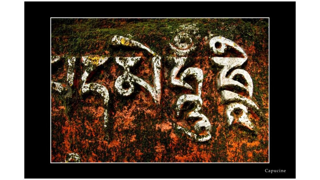 Sanskri