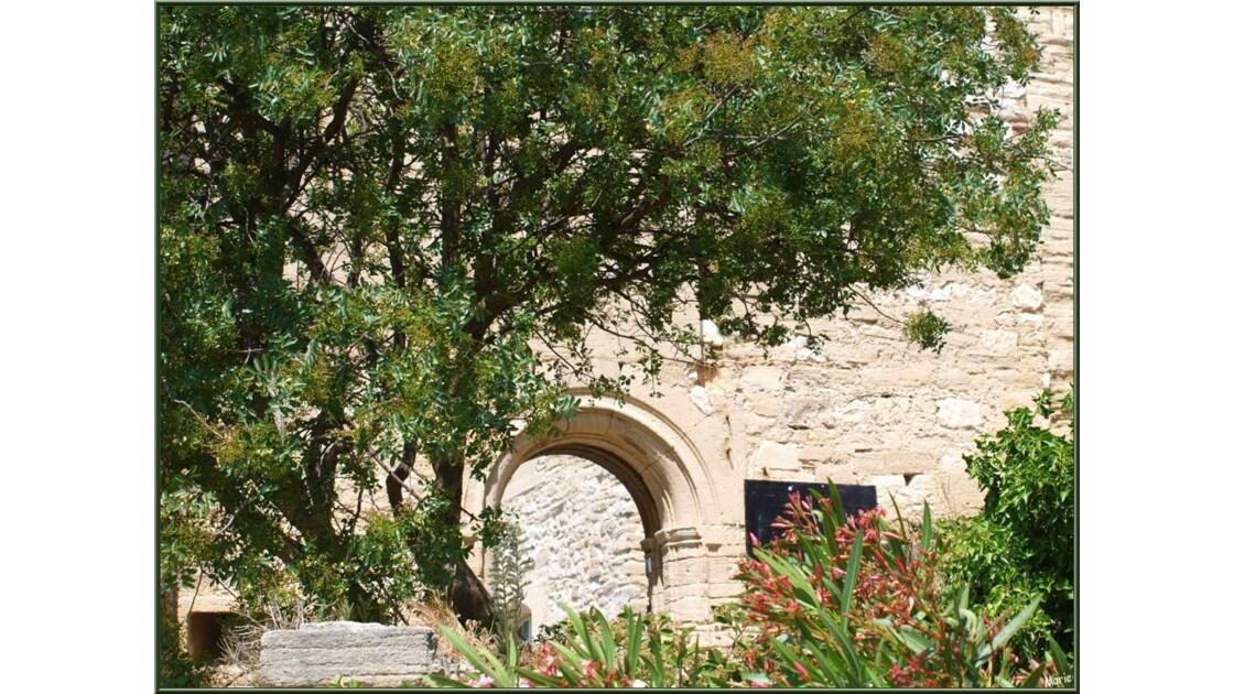 Le château, jardin extérieur_P6019173