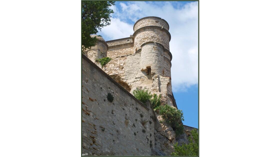 Tourelles du château_P6019181.jpg