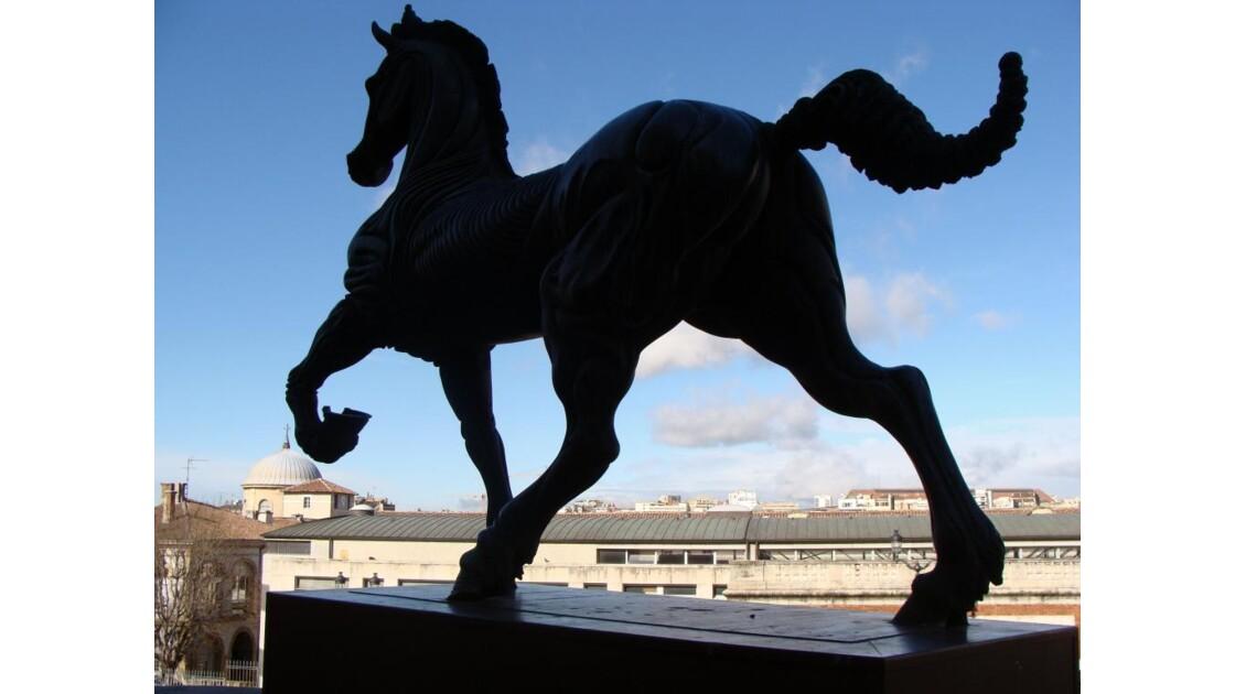 Horse bronz