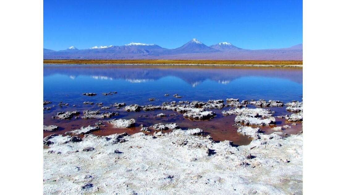 Laguna Cejar, lac de sel