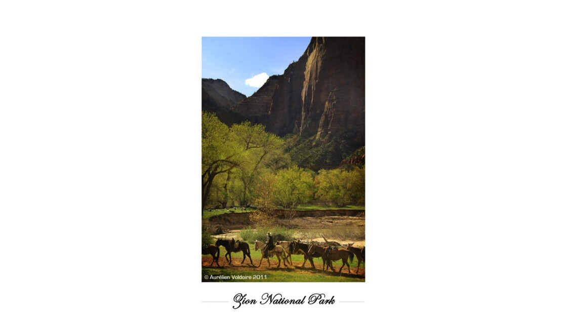 The Zion National Park
