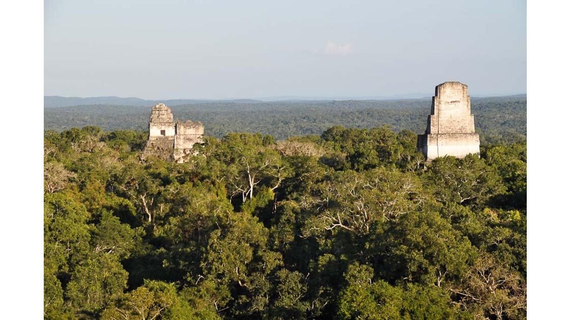 Tikal : vue du haut de la pyramide IV