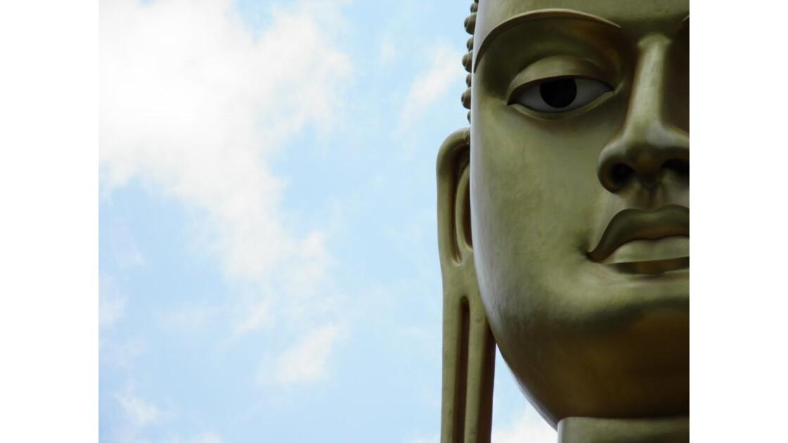 Dambula - Visage du grand Bouddha