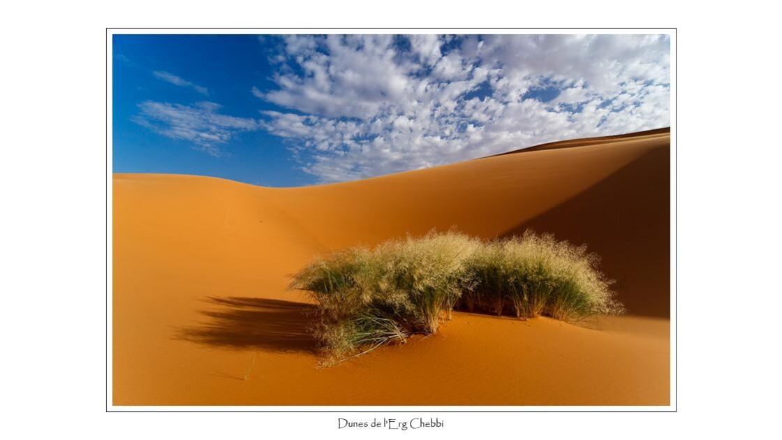 Dune de l' Erg Chebbi