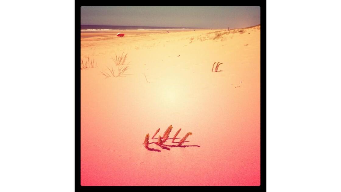 dune en gironde