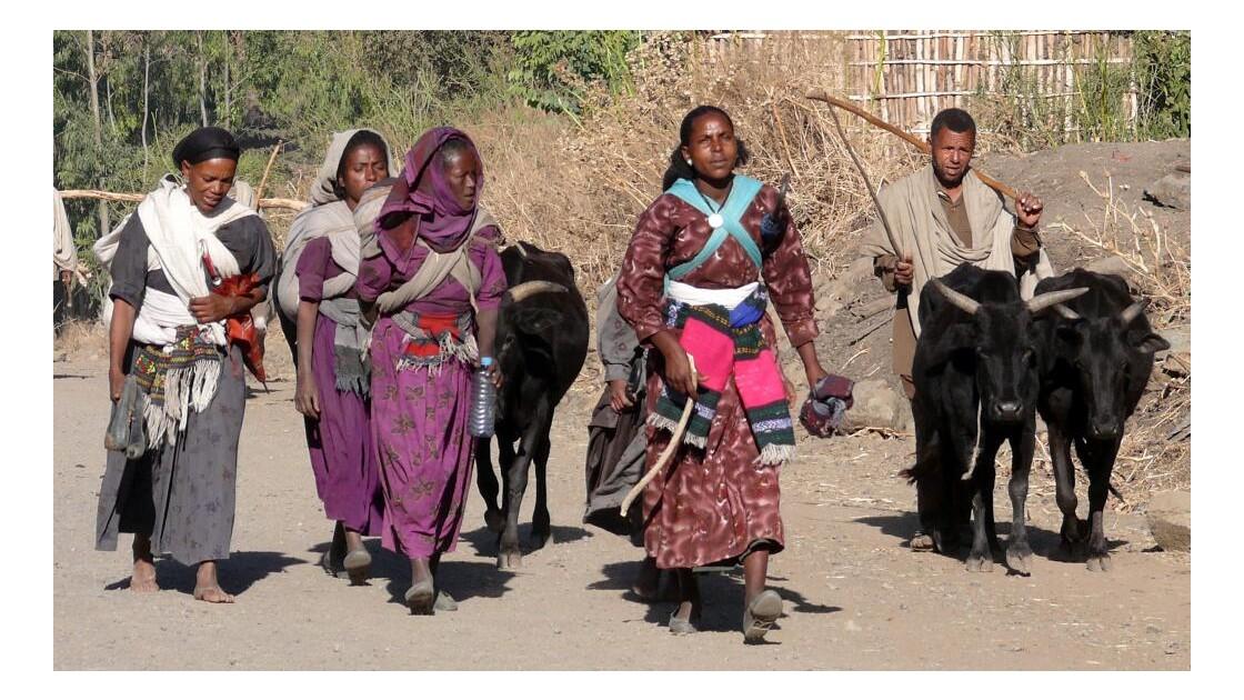 Femmes en marche vers la ville