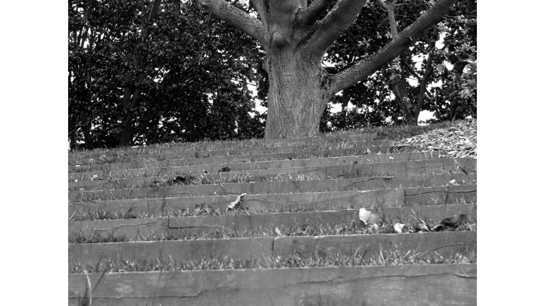 Escaliers I