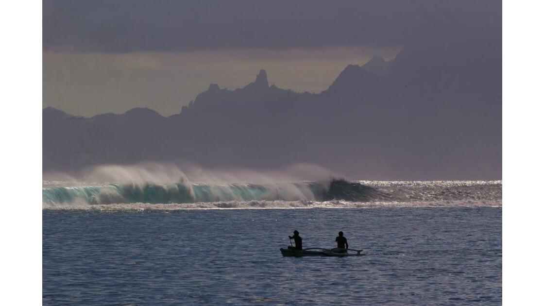 tahiti barriere de corail moorea