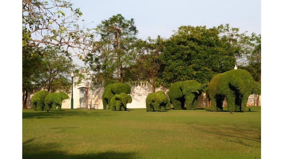 thailande__240 Troupe d'éléphants!