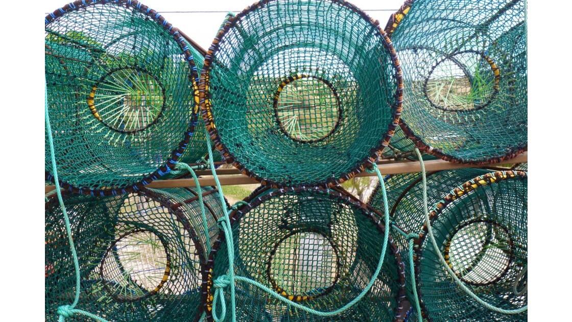 prêts pour la pêche!!