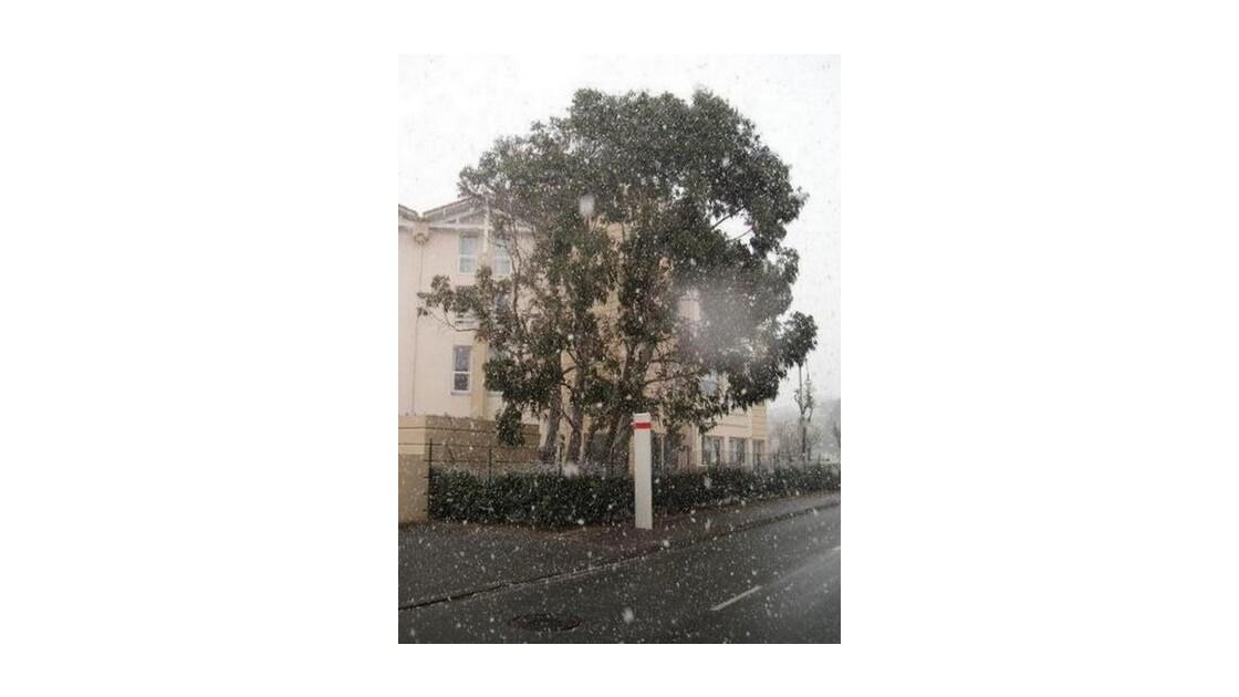 Flocons de neige et arrêt de bus