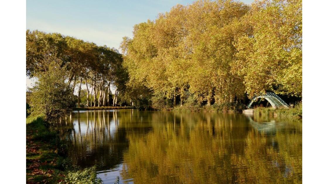 Vieux Canal aux couleurs d'automne