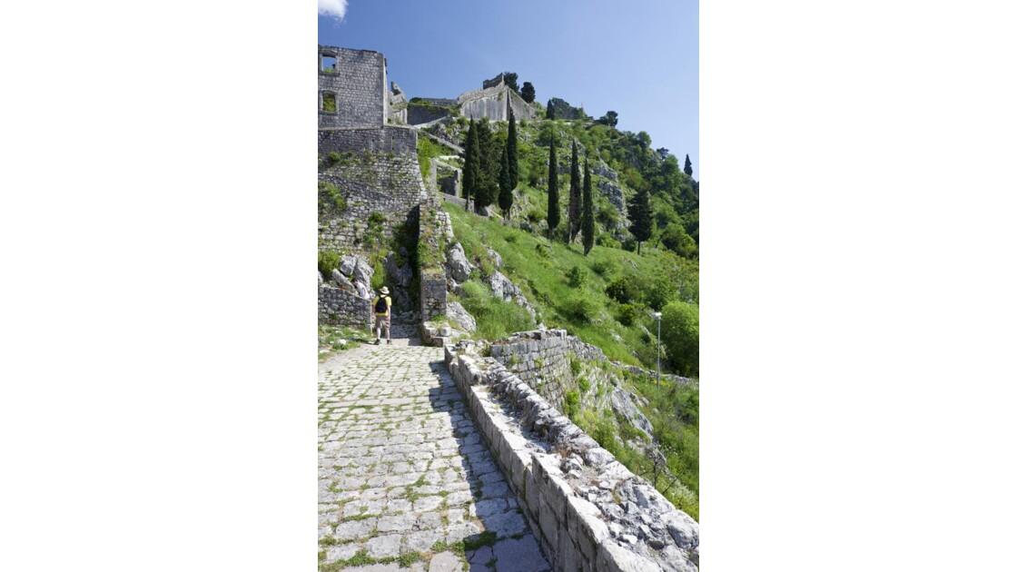 Muraille de Kotor